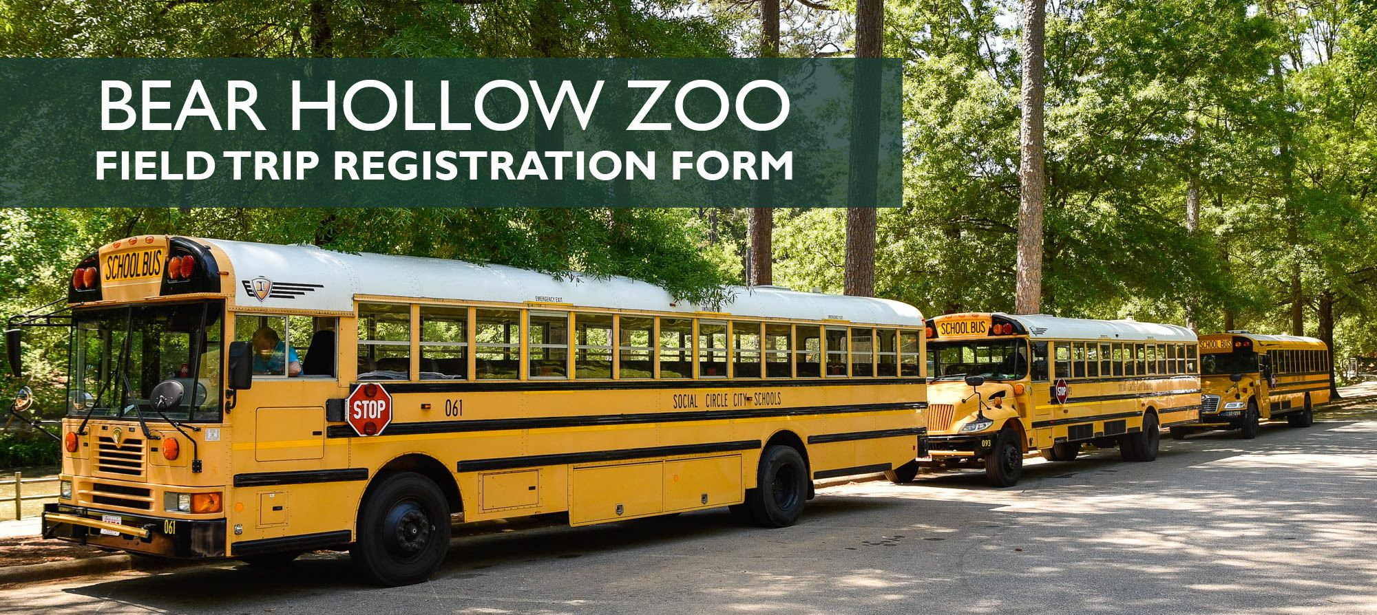 Bear Hollow Zoo Field Trip Form