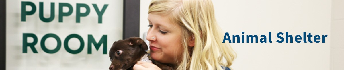 Animal Shelter header with volunteer holding puppy