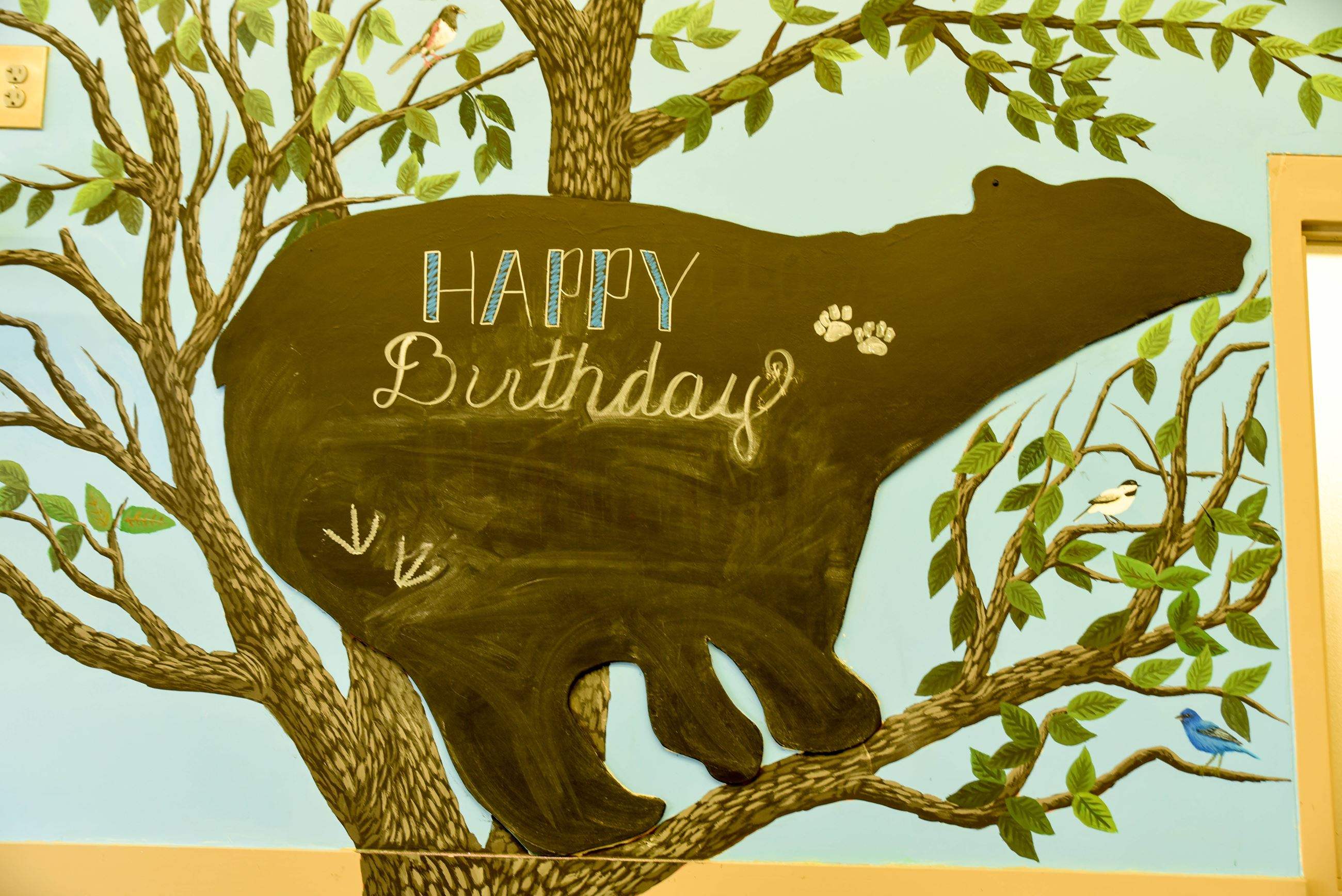 "black chalkboard sign in the shape of a bear, says ""happy birthday"""
