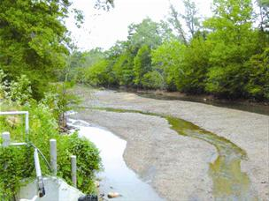 The Middle Oconee River during a drought