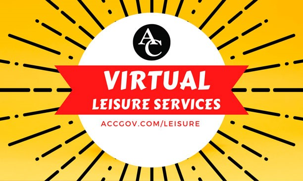 Virtual Leisure Services