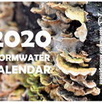 2020 Stormwater Calendar Cover