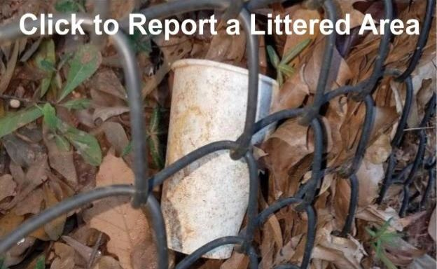 Report a Littered Area