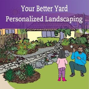 Your Better Yard Opens in new window