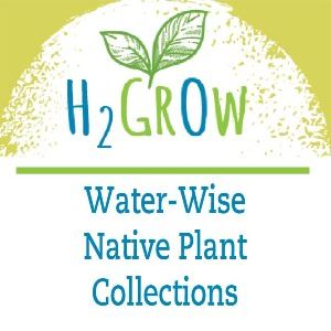H2Grow Opens in new window