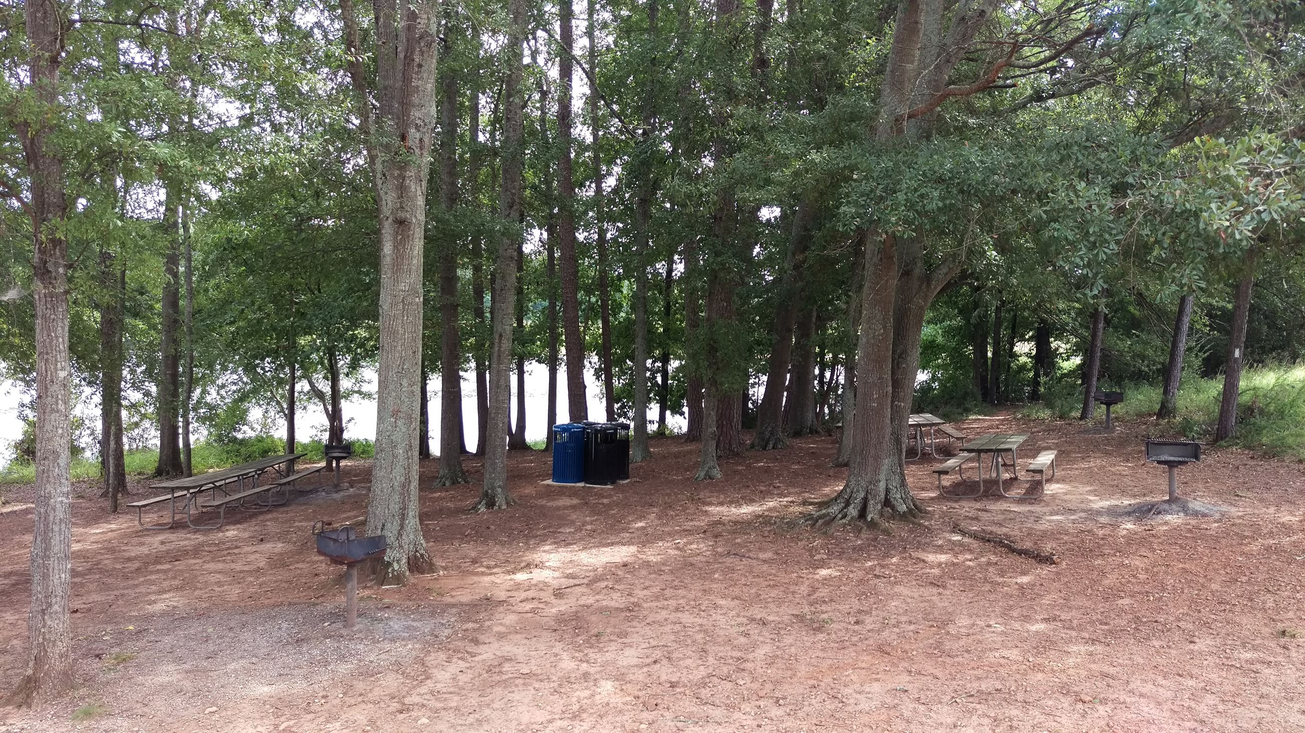 Photo of Picnic Area 1 at Sandy Creek Park.