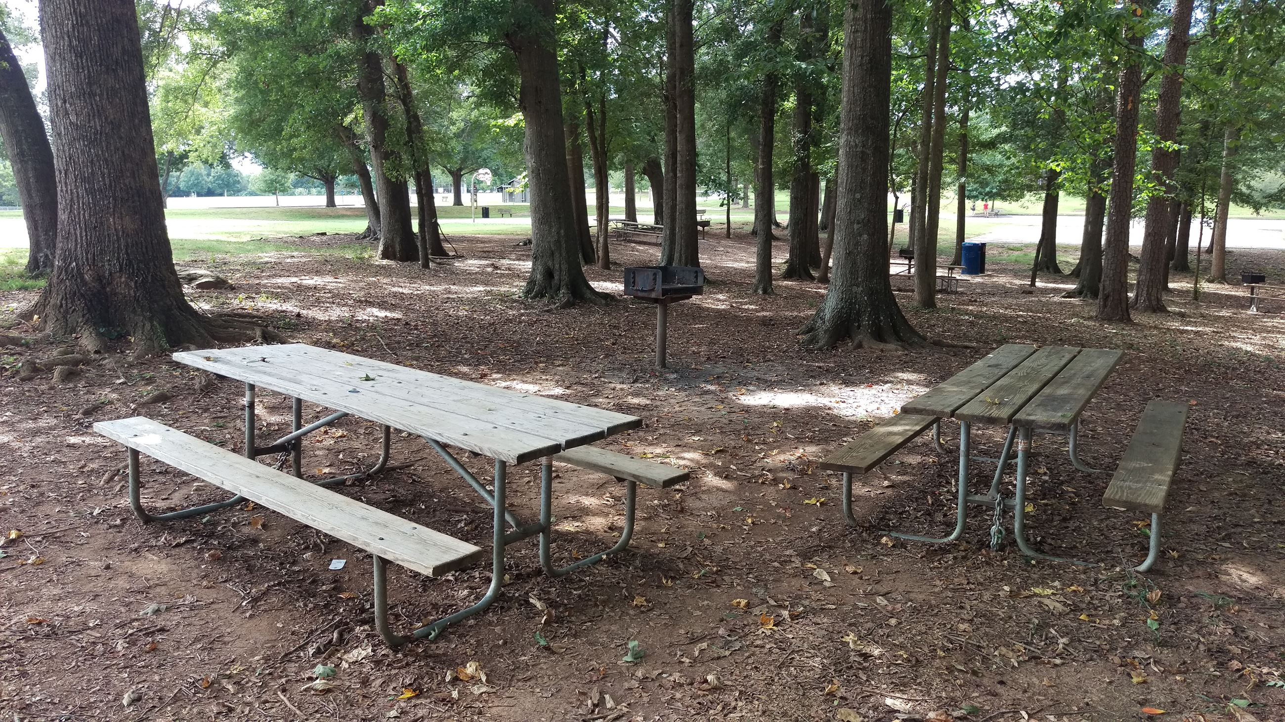 Photo of Picnic Area 3 at Sandy Creek Park.